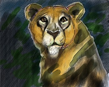 The leader of the Pride