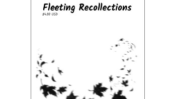 Fleeting Recollections