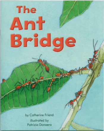 The Ant Bridge
