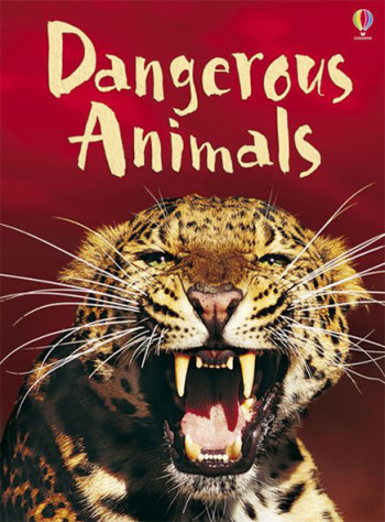 Dangerous Animals - Beginners