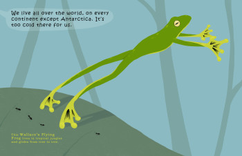 Frogs: Weird and Wonderful picturebook sample spreads