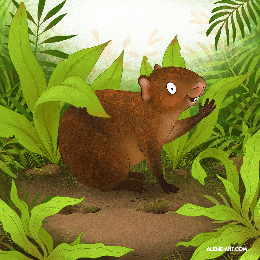 The Astonishing Agouti | The Brave Binturong (Flip-over book)